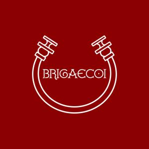 brigaecoi-logo-qd